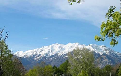 Mt. Timpanogas dominates the...