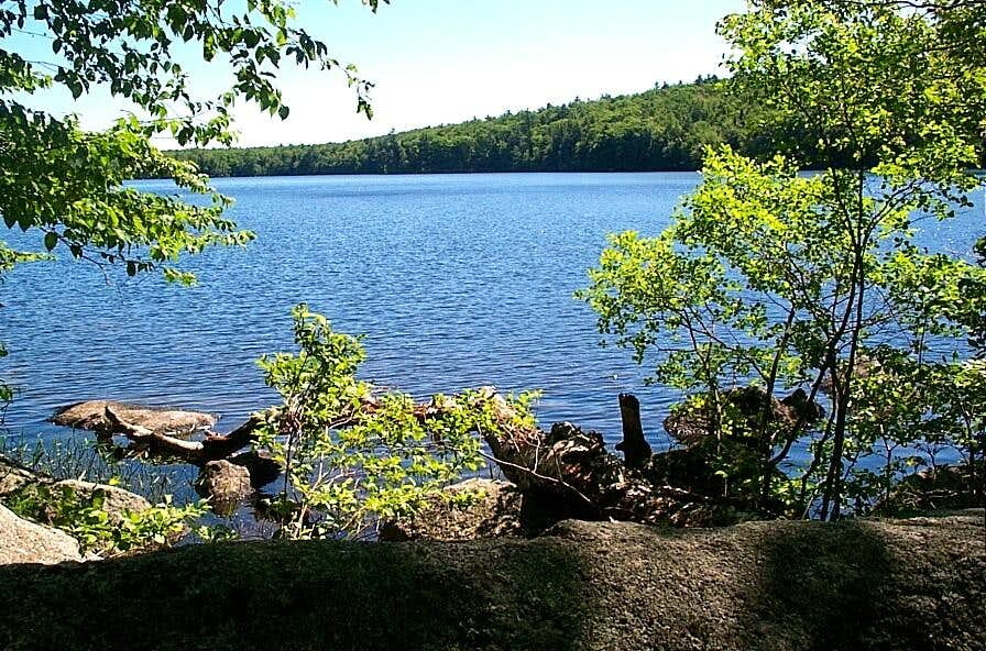 Lake Picture from the Tudor Trail