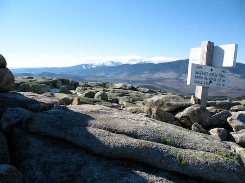 View to Mt Washington