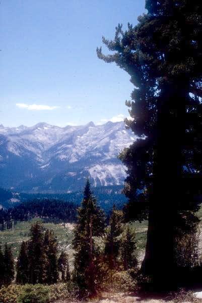 Alta Meadow as seen from Alta Peak