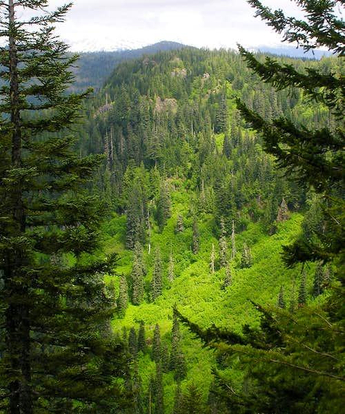 Summit and Ridge