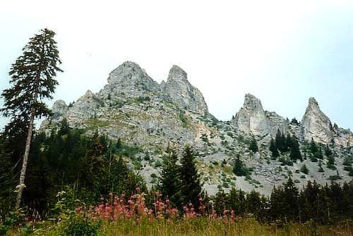 Mont César over Bernex...