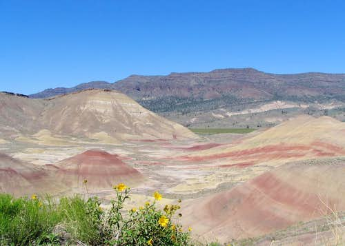 Sutton Mountain as seen from the Painted Hills