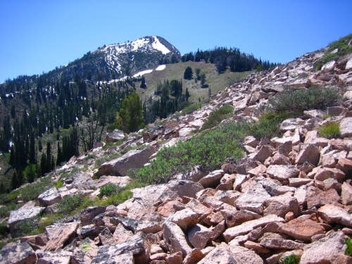 Nearby Newman Peak