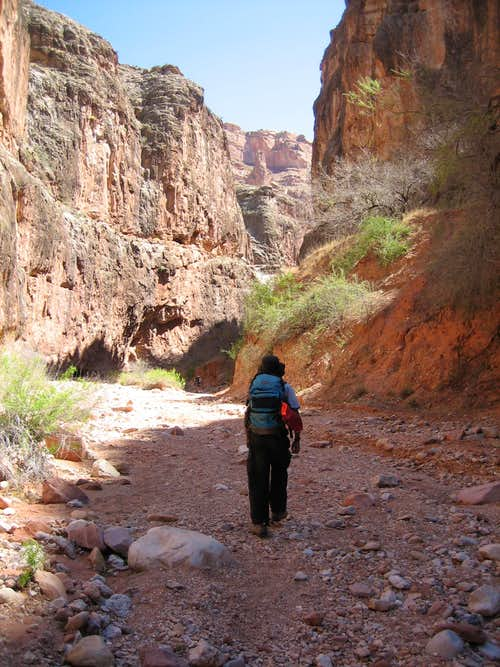 Walking into Carbonate Canyon