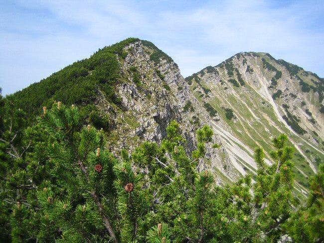 Notkarspitze Summit