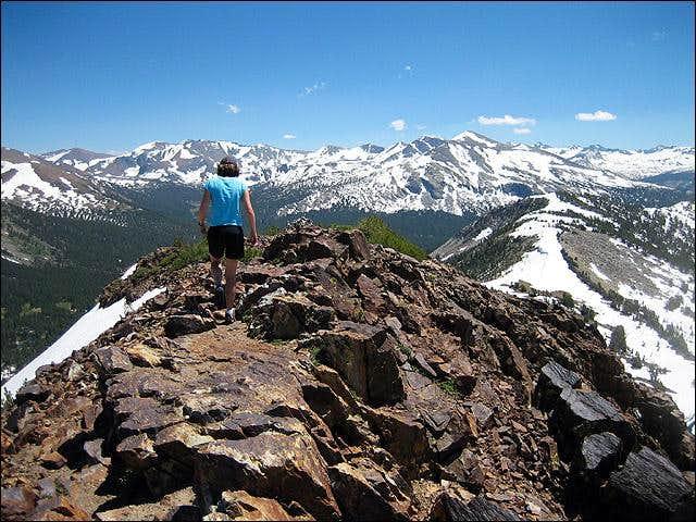 Summit of Gaylor Peak