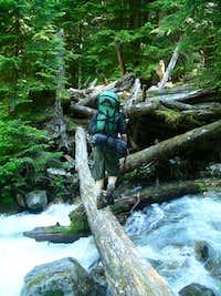 Log crossing on Bachelor's creek