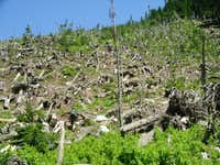 Lost trail in avy zone