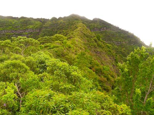 Ascent ridge