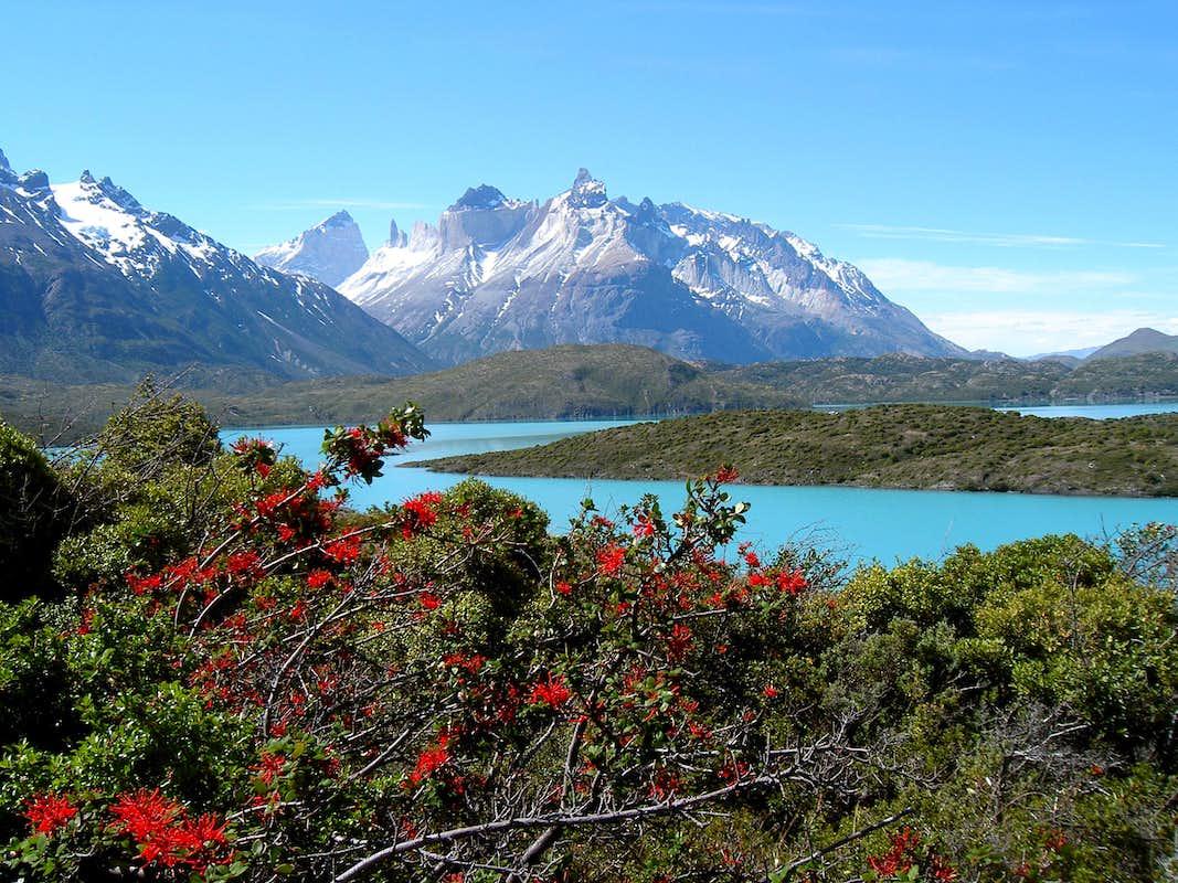 Los Cuernos del Paine from Lago Pehoe : Photos, Diagrams