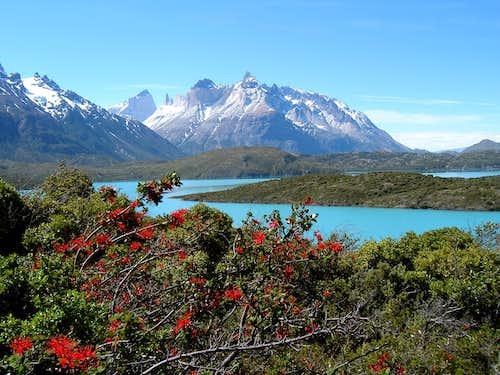 Los Cuernos del Paine from Lago Pehoe