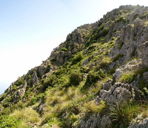 The Monte San Caloògero west face