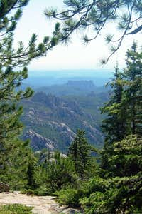 Backside of Mt. Rushmore