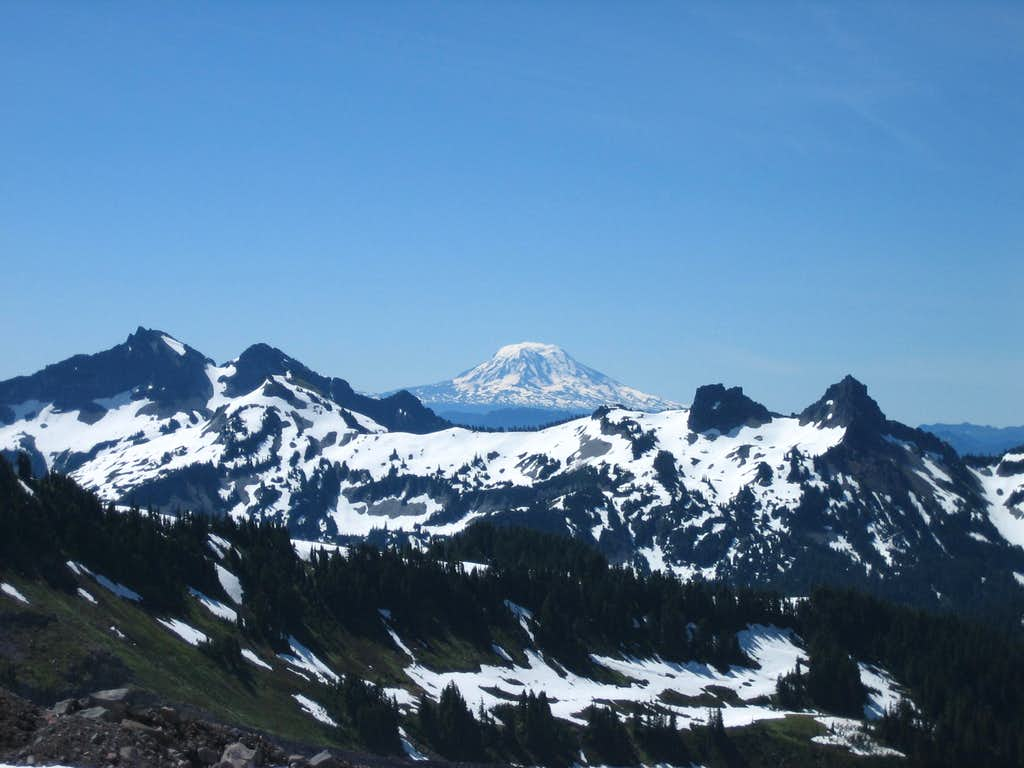 Mt. Adams from approach to Kautz route