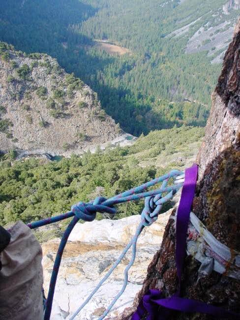 The belay tree at the top of...