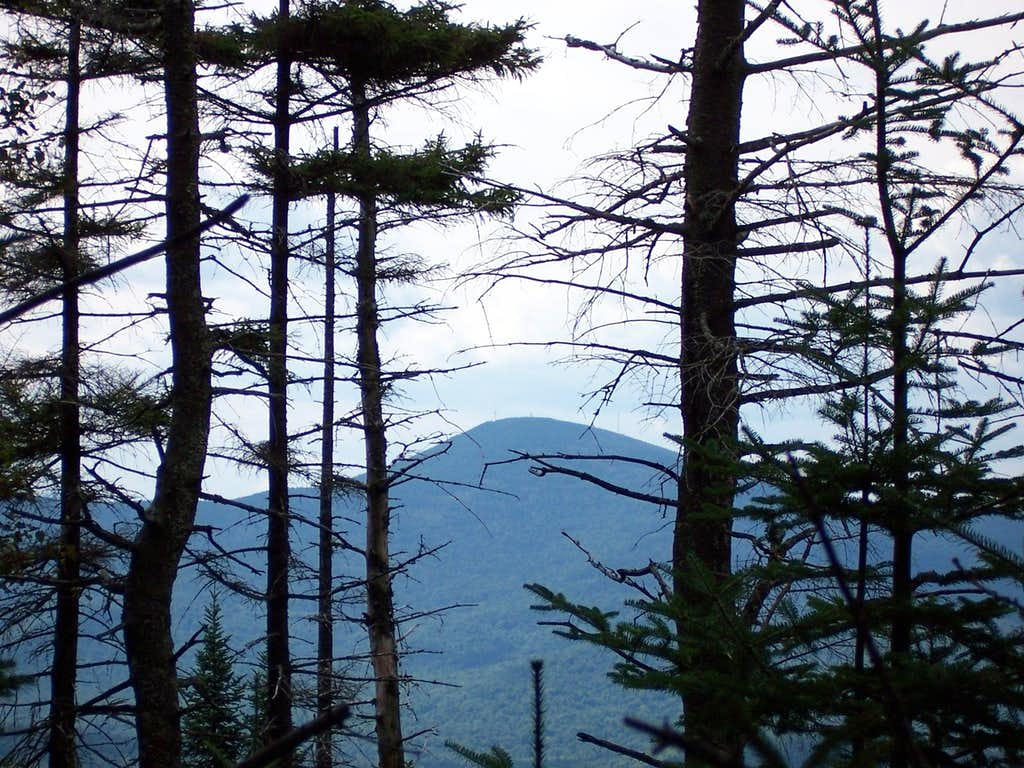 Blue Mt. from the NP Trail Height-of-Land