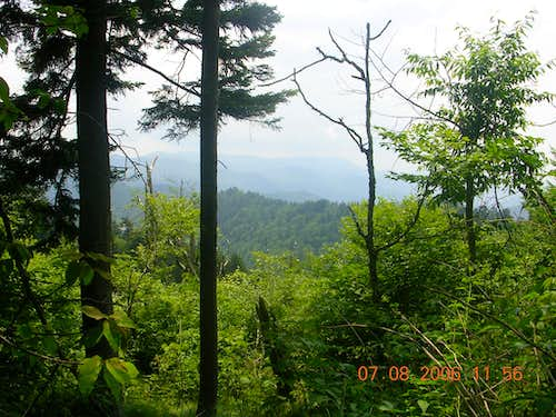 View from the Newfound Gap to Clingmans Dome Trail