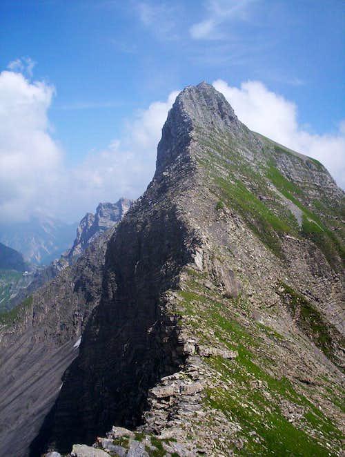 Hinter Grauspitz (Schwarzhorn)