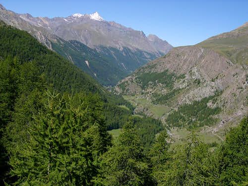 The initial part of Vallone dell\'Urtier seen from the trail of Teppelunghe