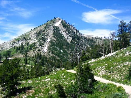 Trinity Mountain Approach Road