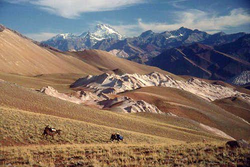 Aconcagua from near the base...