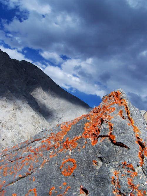 Orange Lichens and Borah Pk.-ID