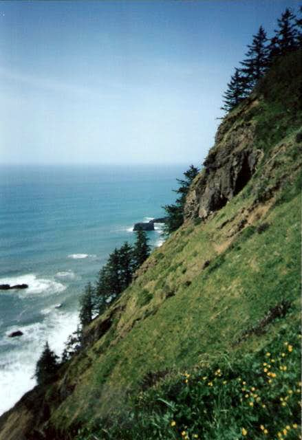 Looking north from Cascade Head