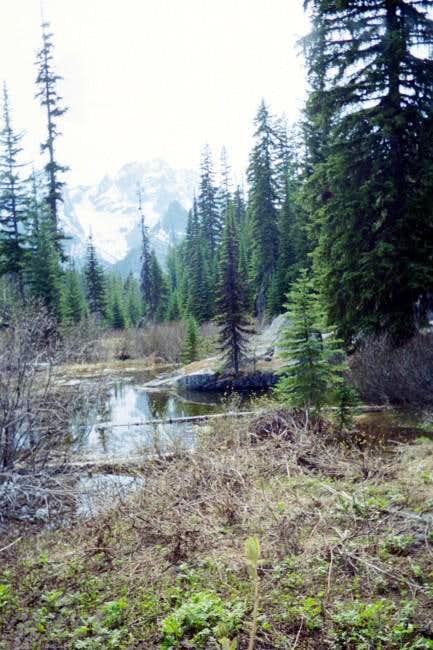 Mt Stuart from the Lake...