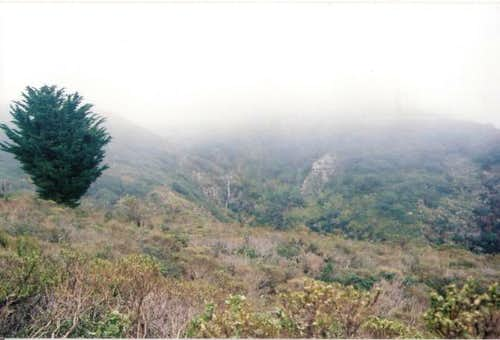 Waterfall on Montara Mountain