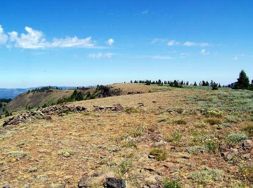 Lookout Mountain (Ochocos)