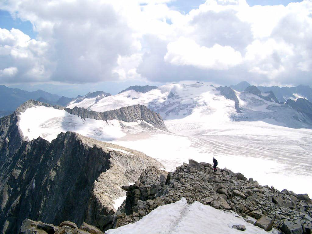 Corno Bianco and Adamello glacier