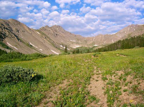 Grizzly Peak's South Ridge
