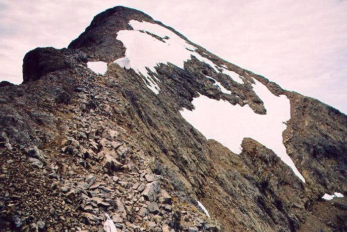 The summit fr NE Ridge