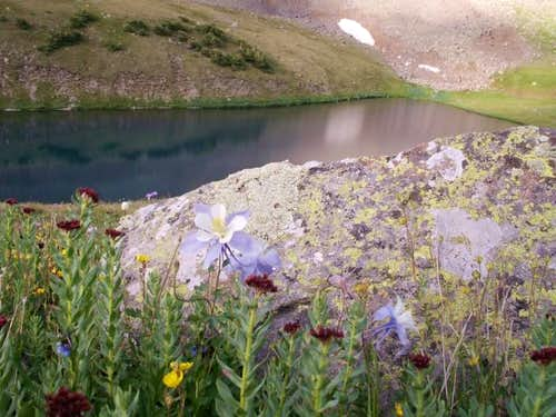 Columbines and Upper Blue Lake