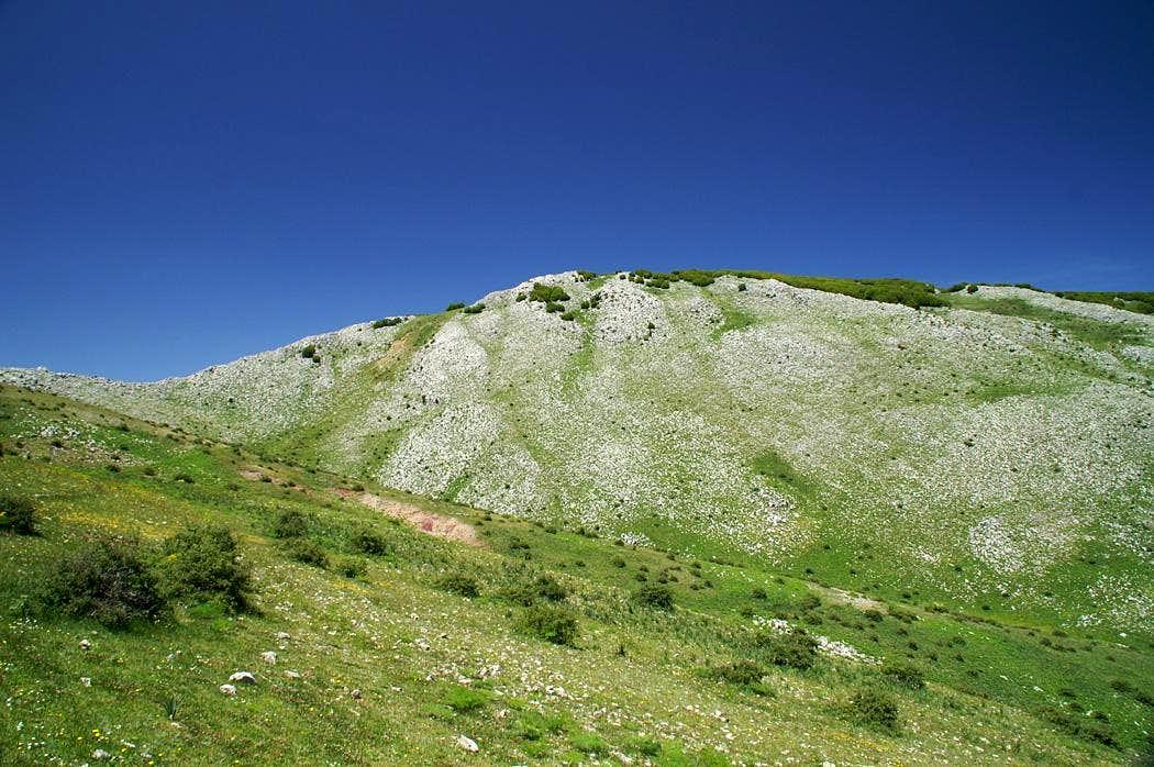 Monte Dei