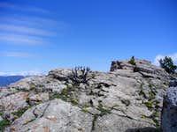 Baldy Mountain Summit