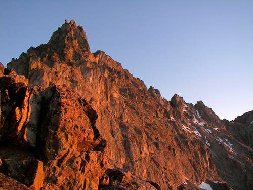 Seven Fingered Jack (From Col)