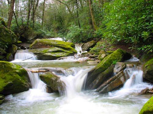 Pond Creek, NC