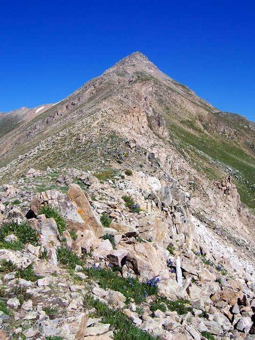 Casco Peak Ridge