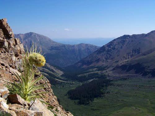 Casco Peak Ridge View