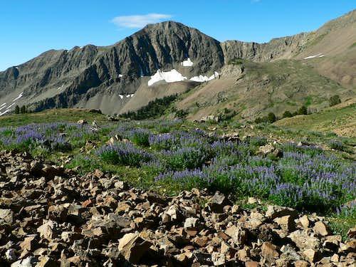 Malorey Peak