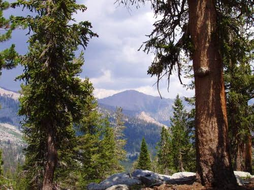 Florence Peak from Windy Ridge