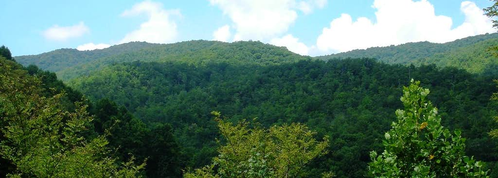 Lower Slopes - Little Rock Knob
