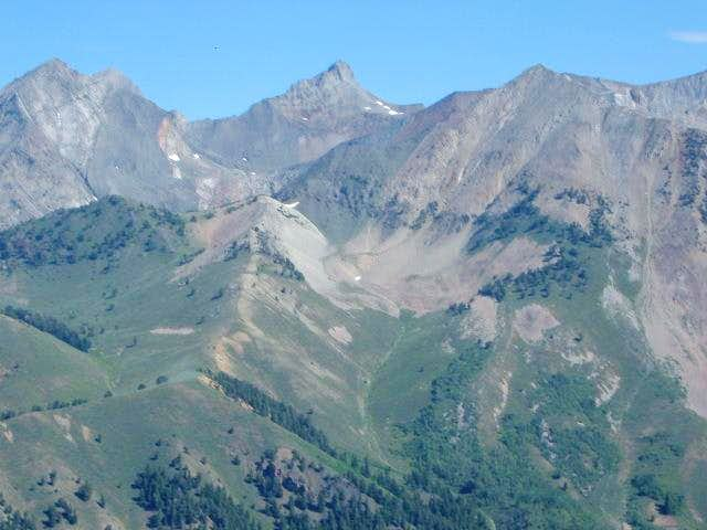 High Pioneers from Grays Peak