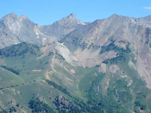 High Pioneers from Grays Peak