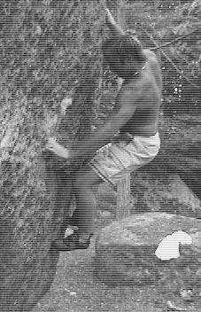 joel1973