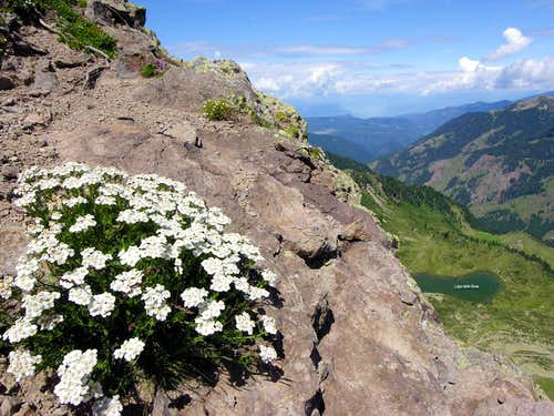 Monte Ziolera: a  north view