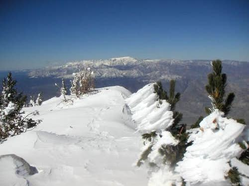 San Gorgonio from summit of...