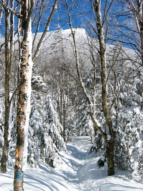 The Burrows Trail in winter